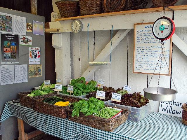 Dunbar Gardens farmstand