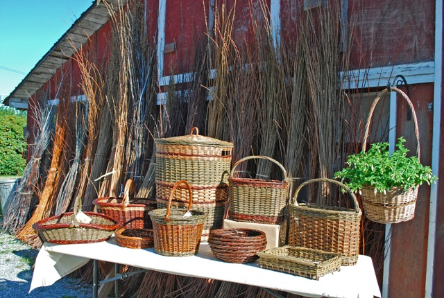 baskets and willows at Dunbar Gardens
