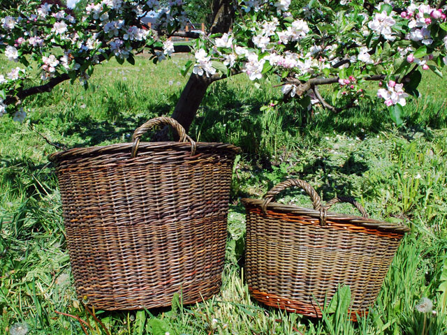 two willow storage baskets