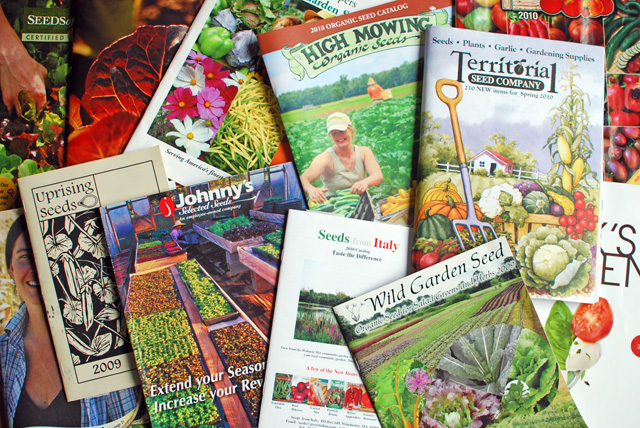 seed catalogs photo by Dunbar Gardens