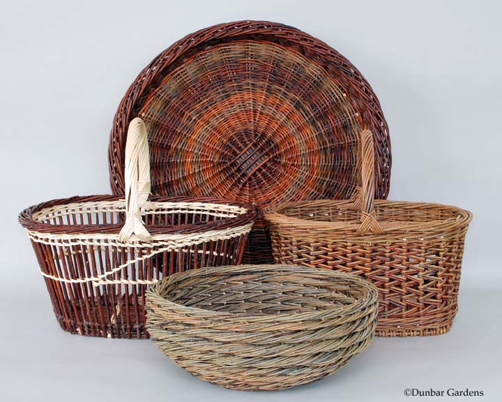 Katherine Lewis baskets in the Cole-Ware collection